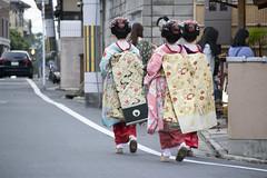 (quashlo) Tags: kyoto maiko geiko geisha   gion kyotocity       higashiyamaward