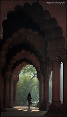 Light at the End (Ragstatic) Tags: world light red india tree heritage fog lady google arch fort top candid delhi pillar culture images structure unesco redfort