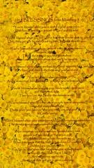 A 2012 Blessing (J316) Tags: flowers blessings cny scripture happynewyear 2012 daisys lunaryear j316 2013 matthew5 beattitudes betongwinterflowers