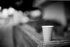 Paper Cup (DowntownRickyBrown) Tags: bokeh nikonf3hp bluebottle papercup fujineopanacros selfdevelop nikkor50mm12ais ilfosol3