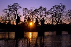 Returning at sunset (yadavop) Tags: nepal light sunset people sun landscape evening nikon photos chitwan ops sauraha opsphotos d7000