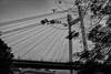 Mon kharap kora bikel (Shutterb0y) Tags: bridge afternoon hanging 2ndhooglybridge secondhooglybridge vidyasagarseth