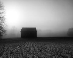 Southern Maryland in Black and White (jeffsmallwood) Tags: morning blackandwhite field fog barn rural sunrise dawn farm foggy maryland cpc 123bw somd