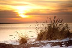 Winter Lakeshore (Just Add Light) Tags: winter lakemichigan add lakeshore chroma gnas gnasjust lightmorningcitydriving