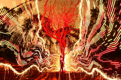 (quornflake) Tags: longexposure trees red orange lightpainting man tree wool yellow night fire weird fireworks sparklers fisheye lighttrails trippy sparks