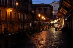 Catania - Dawn suggestions (ciccioetneo) Tags: nightphotography italy night reflections dawn nikon italia nighttime sicily suggestions fishmarket catania sicilia reportage pescheria reflexs nikon3570mmf28 d7000 apiscaria nikond7000 ciccioetneo