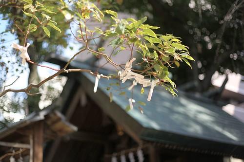おみくじ・大阪天満宮