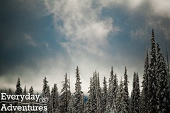 Big White 24 (Every Day Adventures) Tags: trees winter woman snow canada ski cold building ice smile kids breakfast forest fun snowshoe woods bc exercise aaron adventure kristen kelly gondola laughter snowshoeing nordic kelowna activity igloo bigwhite 2youngwoman