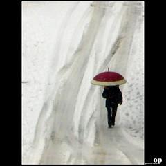 snow (Osvaldo_Zoom) Tags: snow cold neve freddo canong7