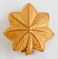 1940s World War II golden oak leaf emblem, signif