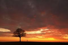 L'arbre et l'enfant (photosenvrac) Tags: photo ciel nuage paysage enfant arbre personnage