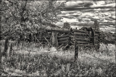 Silent Echo* (danielgweidner) Tags: summer vacation bw mountains abandoned clouds landscape blackwhite cabin ruins colorado infrared nik crestone selectivecolor eos50d infraredconversion niksilver