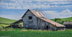 DSC_6547-Edit-Topaz-2 (rbird1286) Tags: buildings landscape washington barns palouse 2015