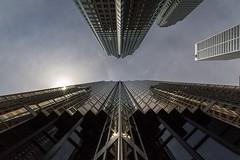 We reflect back...  #Toronto #Lookup #City #Clouds #CloudPorn #Sun #Reflection #Architecture #UrbanFragments #ViewsFromThe6 #Urban #UrbanExplorer #Urbex #TorontoOntario #Ontario (kallyone) Tags: city urban sun toronto ontario reflection architecture clouds lookup cloudporn urbex torontoontario urbanfragments urbanexplorer viewsfromthe6