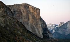 El Capitan. (Tall Guy) Tags: california usa yosemite elcapitan tallguy