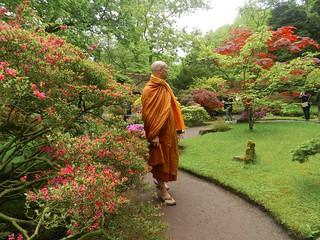 Japanese Garden Clingendaal