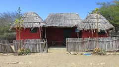 Bonaire Cultural Park (Stabbur's Master) Tags: cruising bonaire caribbeansea caribbeancruising carnivalcruiseline dutchcaribbean caribbeannetherlands mangazinadireiculturalpark kasdebara sticksandmudhouse