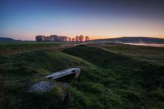 Hobbithhle (Rainer Schund) Tags: nature fog sunrise nikon nebel natur gras blau morgens blauestunde nikond700 naturemasterclass hobbitcave natureexploring hobbithhle