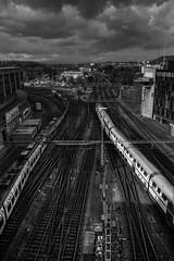 IMG_6150-Bern Hauptbahnhof (Reietto) Tags: bear sky panorama rose clouds swisse nuvole cloudy panoramas baren bern svizzera rosengarten stich orsi orso berna swizerland graben nubi barengraben tamronsp1750f28 giardinodellerose canoneos7d cristiancarbini16 bern2016