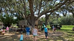 Sweetfields Farm (heytampa) Tags: playground oak farm treehouse sweetfieldsfarm