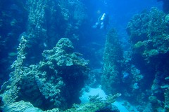 Canyon (fxdx) Tags: canyon mountains underwater scuba diving el quseir