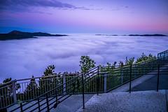 Foggy morning in Bergen, Norway (Paulius Bruzdeilynas) Tags: city trip travel mountain color norway fog clouds sunrise norge sony foggy norwegian bergen magical floyen sonyalpha visitbergen sonya7ii