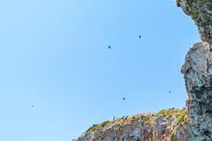 Seascape - Italy (fabioseda) Tags: ocean sol praia beach mar italia waves natureza paisagem castro puglia sul grottazinzulusa 500px