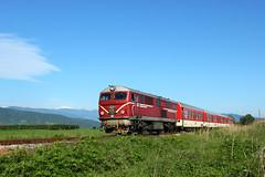 The Small Train (Krali Mirko) Tags: train locomotive railroad railway transport outdoor bulgaria rail      bdz henschel 75 75005 septemvri