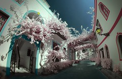 Little Venice in Puerto de Mogan (McSnowHammer) Tags: flowers buildings de ir puerto infrared gran canaria mogan viveza