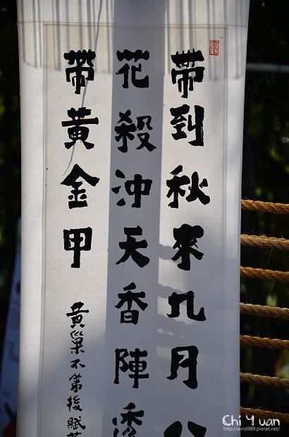 2011士林官邸菊展02.jpg