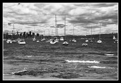 Sydney CBD view from Watson Bay (Enjoy Little Things - www.enjoylittlethings.com) Tags: travel tourism canon photography bay asia head south australia things enjoy watson 7d myportfolio