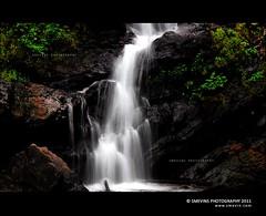Nature Calling.......... (Smevin Paul - Thrisookaran !! www.smevin.com) Tags: