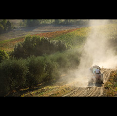 Way into the vineyard... (sedge59(off)) Tags: italy landscape tuscany sailsevenseas sailsevenseasmaster