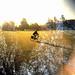 Autumn 2011: Bike ride