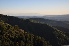 Castle Rock State Park, Santa Cruz (souravdas) Tags: california statepark usa santacruz mountains landscape greenery castlerock scphoto