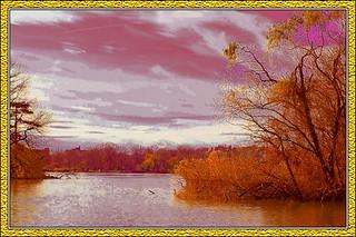 Lake wFL