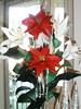 Origami Christmas Poinsettia