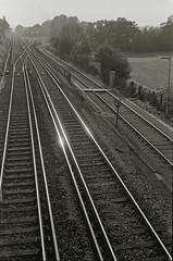 (Innis McAllister) Tags: morning travel blackandwhite monochrome metal train early vanishingpoint track empty tracks rail journey rails distance glint elevatedview