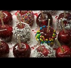 fresh for the picking [add a note to pick yours] (elmofoto) Tags: red apple boston dessert candy coconut fav20 sprinkles mm fav30 quincymarket faneuilhall gettyimages jimmies 1000v fav10 fav40 ssfmlm elmofoto lorenzomontezemolo