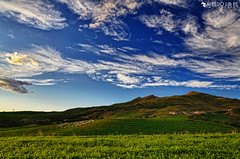 Italian Country, Catenanuova (alexbravewolf) Tags: light sunset shadow sky italy terrain sun white house black color colour green beautiful field clouds wow one photo fantastic nikon paint pretty italia colours sheep image wind very little good expression background yes gorgeous awesome country extreme great group creative picture lot award superior ground super best explore campagna more most creation maybe winner stunning excellent sicily plus much network contact greatest draw rank incredible extra breathtaking sicilia exciting ohmy phenomenal flickr500 d7000 alexbravewolf