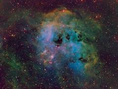 IC410 + Tadpoles (kappacygni) Tags: night stars space nebula astrophotography tadpoles astronomy phd emission auriga baader skywatcher starlightxpress eq6 ic410 Astrometrydotnet:status=solved qhy5 astro:subject=ic410 mn190 Astrometrydotnet:version=14400 sxvrh18 bestastro astro:gmt=20111129t2340 Astrometrydotnet:id=alpha20111273137435
