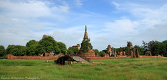 The Kingdom of Ayutthaya  from 1350 to 1767 - Part 6 (Meshari Al-Rezaihan) Tags: blue sky heritage grass canon thailand temple asia southeastasia buddha kingdom buddhism bluesky unescoworldheritagesite unesco worldheritagesite temples siam sukhothai ayutthaya chaophrayariver greengreen canon500d ancientcity heritagesite theravada centralthailand ancientcapital 550d treesthe mahayanabuddhism malaypeninsula meshari lens18200mm canoneos550d alrezaihan thekingdomofthetais krungtai kingdomcloudsgreen