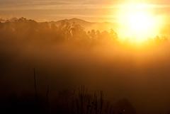 """...vengo del sol y al sol voy..."" (obsidiana10) Tags: sun sol fog landscape dawn soleil nebel paisaje amanecer aurora paysage landschaft niebla brouillard aube neboa morgenrte  wit"
