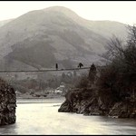 WISTERIA GIVES WAY TO WIRE -- The Precarious Bridge Over the Fuji River (Detail) thumbnail
