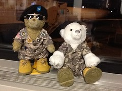 Time for @GeneralSarge and Benny to watch over...