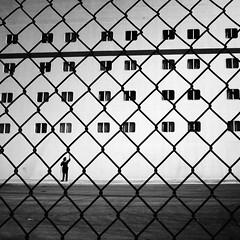 Carnival Ecstasy - Net~Working (. Jianwei .) Tags: carnival net window silhouette wire mesh candid cleaning ecstasy 365 bahamas  jianwei carnivalecstasy kemily