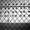 Carnival Ecstasy - Net~Working (. Jianwei .) Tags: carnival net window silhouette wire mesh candid cleaning ecstasy 365 bahamas 剪影 jianwei carnivalecstasy kemily