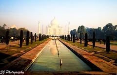 india (90)Taj Mahal