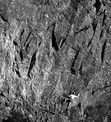 Reecastle Crag Borrowdale (JJFET) Tags: rock climb climbing crag borrowdale reecastle