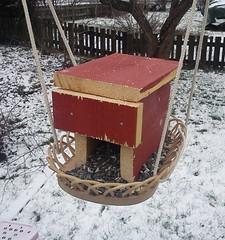 winter snow bird birds vinter feeding feeder feed recycle recycling snö fågelfrö återvinning återbruk fågelmat fågelbord